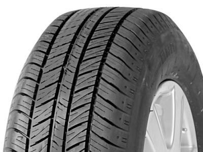 EA603 Touring Tires